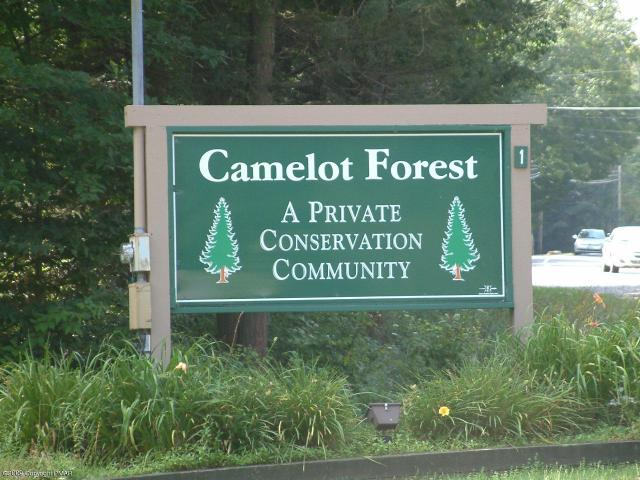 Camelot Forest